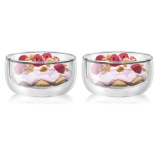 Set of 2 Double Walled...